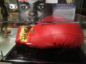 Alis Glove