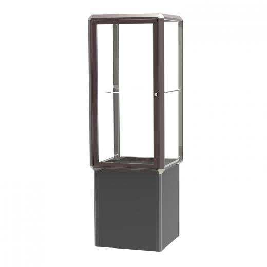 Dark Bronze-Finished Aluminum Frame Standing Display Case with Shelf ...