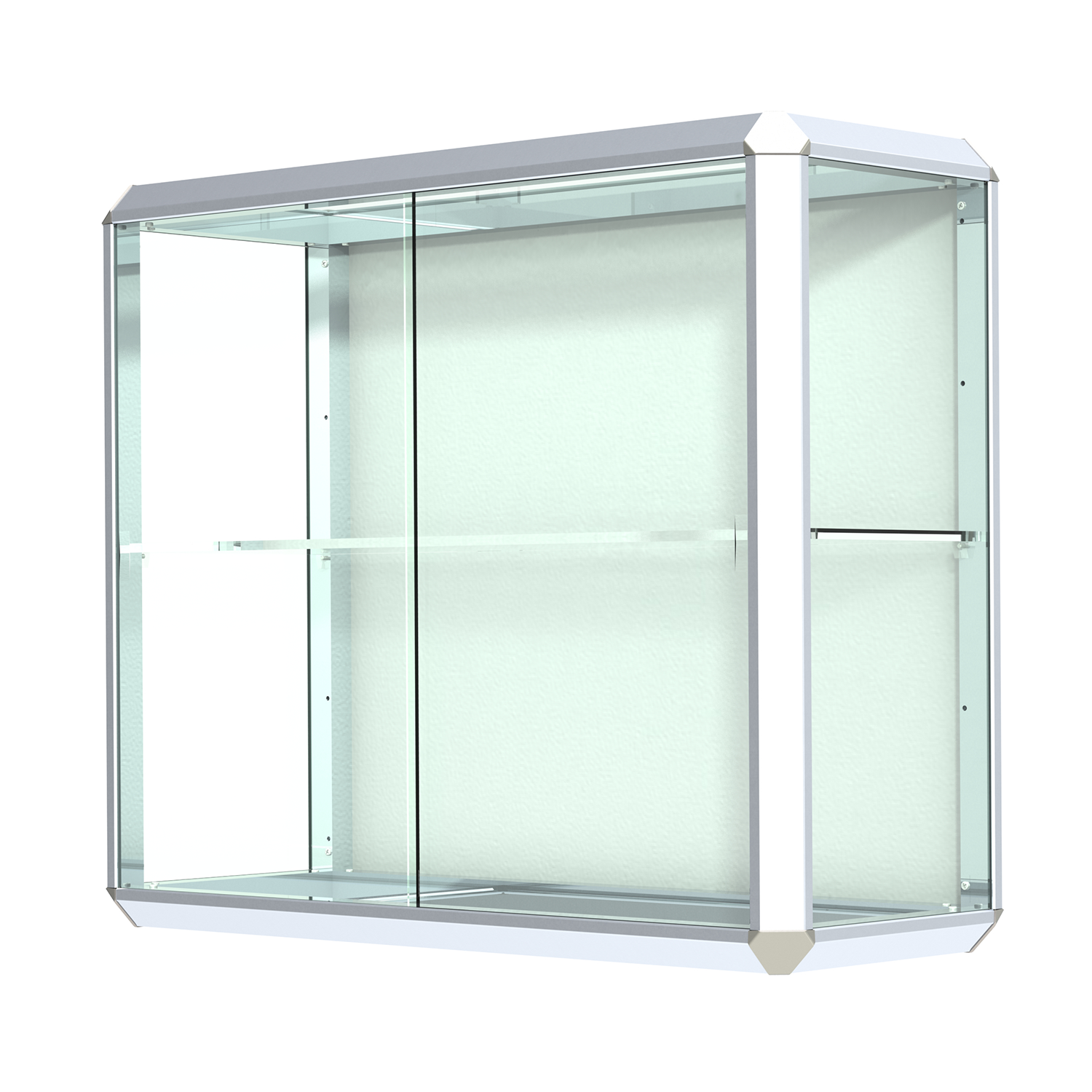 Chrome Finished Aluminum Frame Wall Mount Display Case